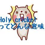 「Holy cricket」って何?驚いた時に使う英語。賢者-ch10